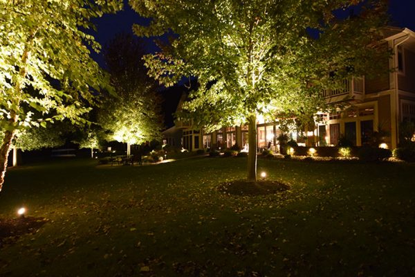 mikes landscape lighting racine, tree lighting, outdoor lighting