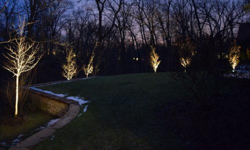 kenosha landscape lighting, landscape lighting vernon hills, landscape lighting trevor