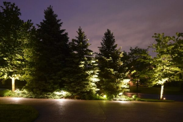 tree lighting kenosha, driveway lighting, outdoor lighting