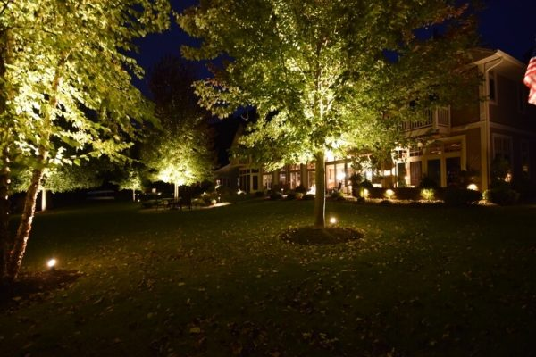 outdoor lighting kenosha, landscape lighting, tree lighting
