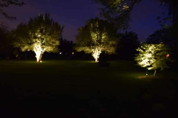Mike's Landscape Lighting, tree lighting, custom lighting