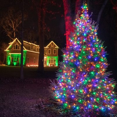 landscape lighting for christmas, bush and tree lighting, christmas lights for landscaping