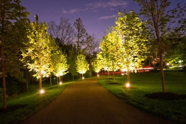 mikes landscape lighting, outdoor lighting, professional lighting installation