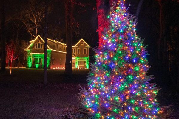 christmas tree lighting, mikes landscape lighting, holiday lighting