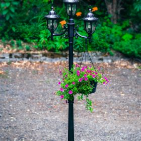 landscape lighting products, outdoor lighting options, lights for the outdoors