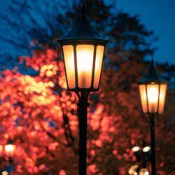 Outdoor Lighting in Winnetka, mikes landscape lighting, outside lighting services